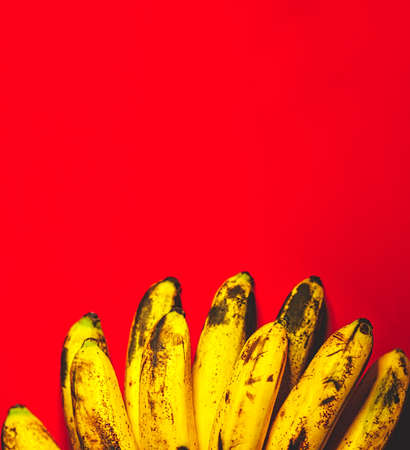 Many bananas on red background with copyspace top view. Bunch of bananas is lying on orange background with dark spots marking ripening process. Standard-Bild
