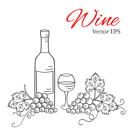 card making: Wine bottle, glass and grapes vector illustration isolated on white background, hand drawn doodle sketch. Wine background.