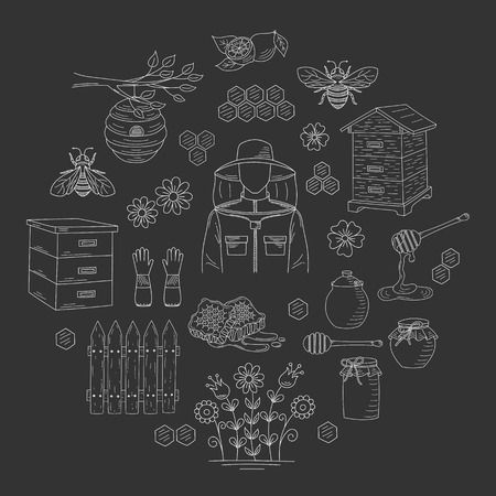 apiarist: Vector honey collection with beekeeping elements Stock Photo