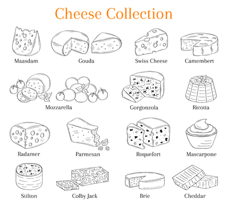 Vector set of different types of cheese, hand drawn illustration isolated on chalkboard background.