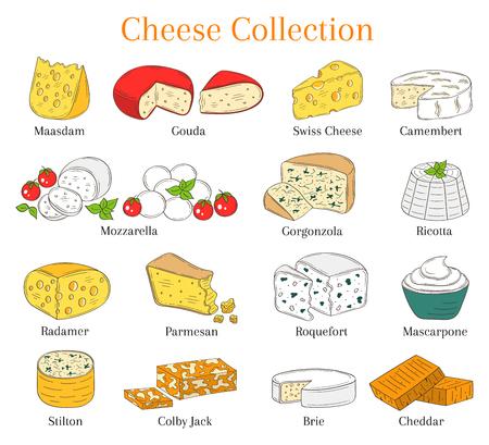 チーズの種類のセットをベクトル、白い背景で隔離の描かれた図を手します。  イラスト・ベクター素材
