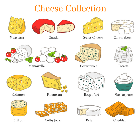 Vector Set of different types of cheese, hand drawn illustration isolated on white background.
