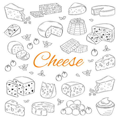Vector Set of various types of cheese, hand drawn illustration isolated on white background. Illustration