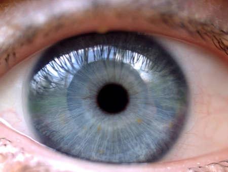 close up of a blue eye photo