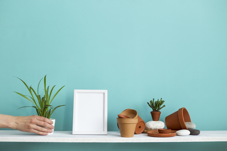 Modern room decoration with picture frame mockup. White shelf against pastel turquoise wall with pottery and succulent plant. Hand putting down potted spider plant.