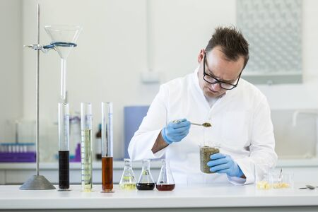 Scientist spills marijuana hemp and seeds on watch glass during experiment in laboratory. CBD and CBDa oils and glass tubes are on table. Healthcare pharmacy from cannabis.