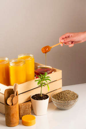 Three jars of CBD honey placed in a wooden crate. Around the crate are positioned a marijuana plant in a white flowerpot, a bowl with hemp seeds, wooden spoons for honey, CBD soap products, with an emphasis on hand that dripping honey into one glass bowl.