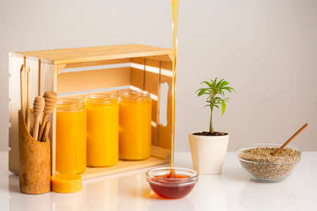 Three jars of CBD honey placed in a wooden crate. Around the crate are positioned a marijuana plant in a white flowerpot, a bowl with hemp seeds, wooden spoons for honey, with an emphasis on honey dripping into one small glass bowl.