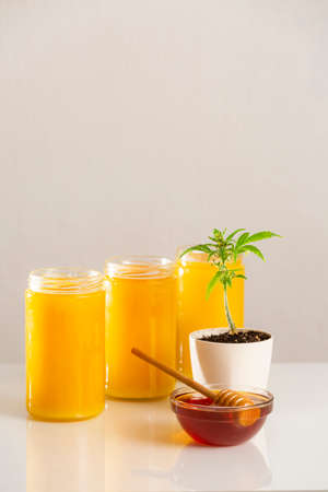 Three jars of CBD honey, with a marijuana plant in a white flowerpot and honey dipper in a bowl with honey on the side.
