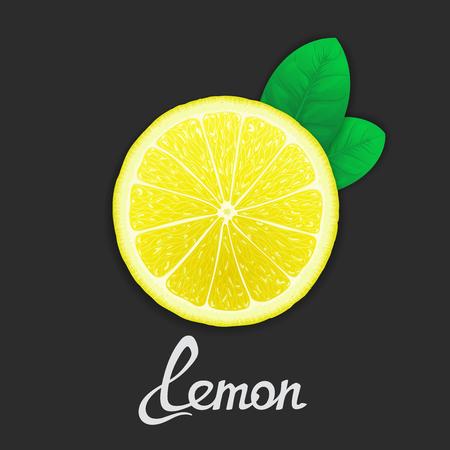 workpiece: Just half of lemon with leaves closeup. Vector art template Illustration