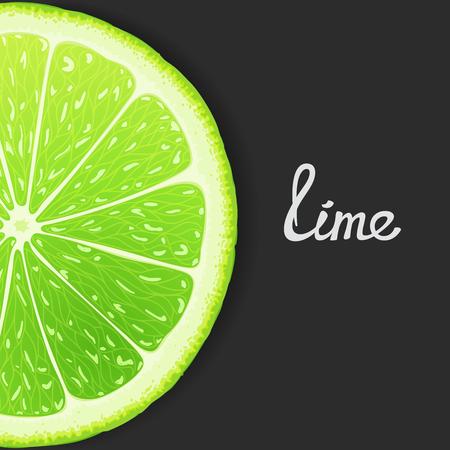 workpiece: Just slice of lime closeup. Vector eps 8 Illustration