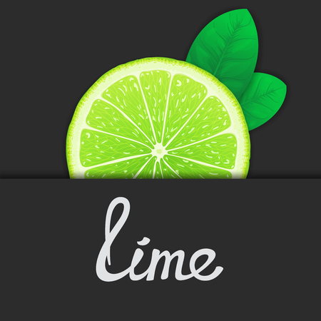 workpiece: Just half of lime with leaves closeup. Vector art template