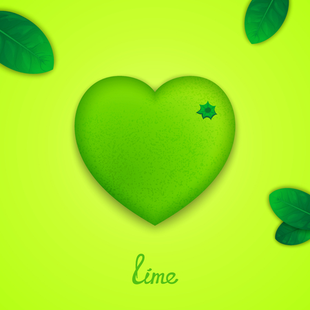 Fruit design concept. Photorealistic surround lime in the form of heart with green leaves Vector