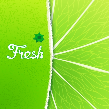 peel: Fresh lime. Abstract creative background with any torn peel and the structure of the fruit