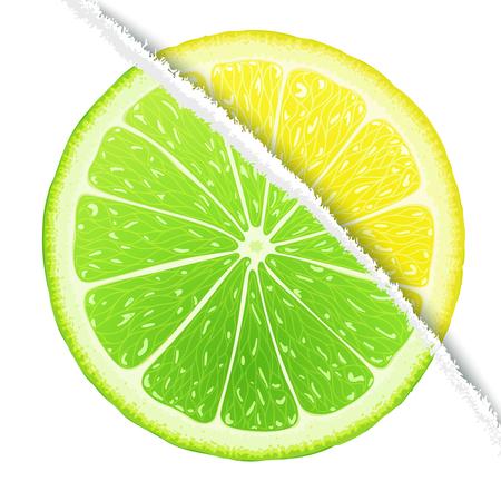 Lemon-lime slices mix in the original version. Vector design elements Vector