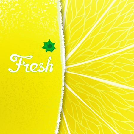 workpiece: Fresh lemon. Abstract creative background with any torn peel and the structure of the fruit Illustration
