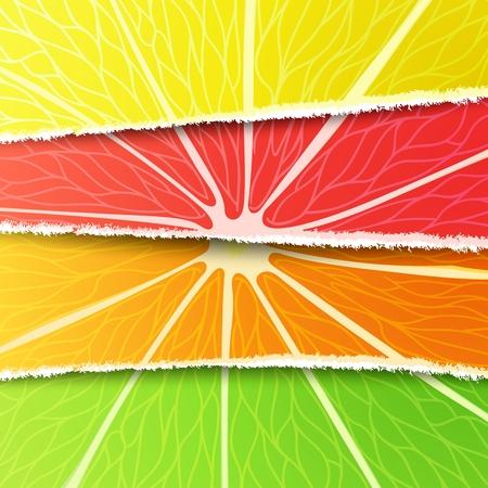 jugo de frutas: Lim�n, lima, naranja y pomelo mezclados en la versi�n original de papel rasgado. Todos los elementos de dise�o de c�tricos Vectores