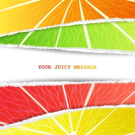 lemon lime: Limone, lime, arancio e pompelmo sfondo misto nella versione cartacea originale strappata con spazio libero per il testo Vettoriali