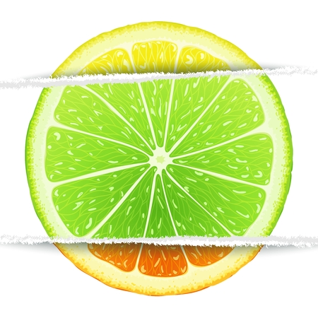 Lemon, lime and orange slices mixed in the original paper version. Triple citrus  design elements Vector