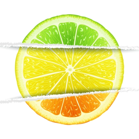 lemon lime: Lemon, lime and orange slices mixed in the original paper version. Triple citrus  design elements