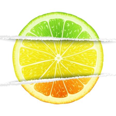 lemon lime: Limone, calce e fette d'arancia mescolato nella versione cartacea originale. Elementi di design di agrumi Triple Vettoriali