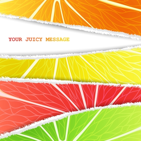 Lemon, lime, orange and grapefruit mixed background in the original torn paper version with free space for text Vector