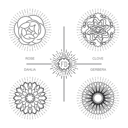 clove: Modern minimalistic design a gerbera, dahlia, clove and rose. Four stylized flowers sign boards,  frames, packaging and other decoration. Vector mono line