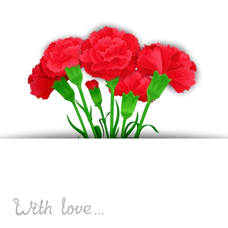 carnations: Elegant template of flowers Carnations in stylized cuts paper. Ready design for poster, web, print, greeting  card and advertisement.