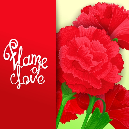 beguin: Flame of love. Bright card with background of carnation flowers.