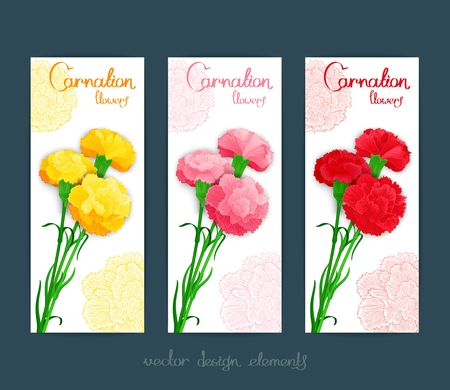 carnations: Three banner template with bouquet of colour carnations. Vector illustration.  Stylized design for flyer, banner and other decoration Illustration