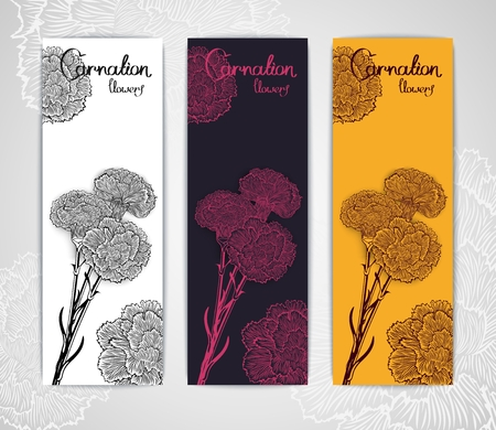 carnations: Three banner template with bouquet of carnations in engraving style. Vector illustration.  Stylized design for flyer, banner and other decoration