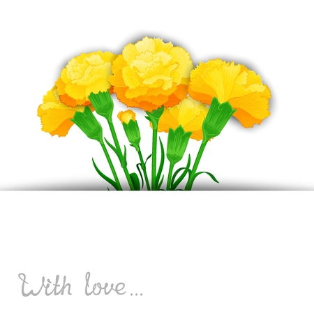 carnations: Vector template of bouquet flowers Carnations in stylized cuts paper. Ready design for poster, web, print,  greeting card and advertisement. Illustration