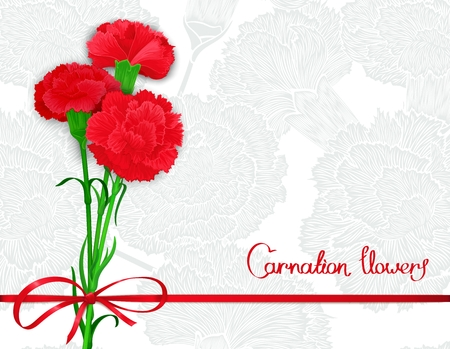 carnations: Background template with bouquet of three red carnations and silk ribbon with a bow. Vector illustration.  Stylized design for backdrop, banner and other decoration