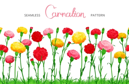 ample: Seamless horizontal border of Carnation flowers. The multicolored buds on long stems with grass.  Ample filling space design