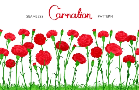 Seamless horizontal border of Carnation flowers. The buds on long stems with grass. Ample filling space design Illustration