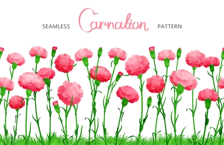 ample: Seamless horizontal border of Carnation flowers. The buds on long stems with grass. Ample filling space design Illustration