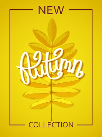 New Autumn Collection for seasonal poster template for design. Realistic rowan branch and handwritten lettering vector illustration