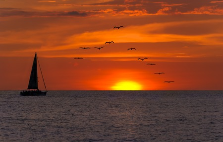 sea bird: Sailboat sunset fantasy with a sulhouetted boat sailing along its journey aagainst a vivid colorful sunset with birds flying in formation against an orange and yellow color filled sky.