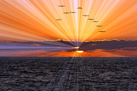 Ocean sunset sun rays is a flock of birds flying overhead while a brilliant bust of sun ray beams shoot of from behind the clouds clouds and the sun sets on the calm blue ocean waves. Stockfoto