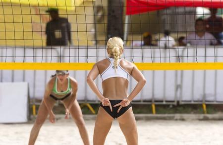pelota de voley: jugador de voleibol es un jugador de pelota atleta volea femenina dando sus se�ales estrategia de socios para el pr�ximo punto.