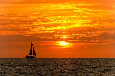 Sailboat sunset is a silhoette of a boat sailing along the ocean water at sunset with a flock of birds following behind. Standard-Bild