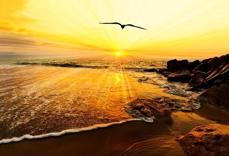 La siluetta dell'uccello dell'oceano del tramonto è un volo dell'uccello con le ali sparse il volo verso la luce della libertà e l'ispirazione sopra il tramonto dell'oceano. Archivio Fotografico - 89684654
