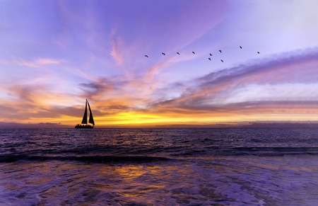 Ocean sunset is a beautiful vibrant ocean sunset with a sailboat sailing along the water and a flocks of birds flying in the evening sky. Archivio Fotografico - 121464322