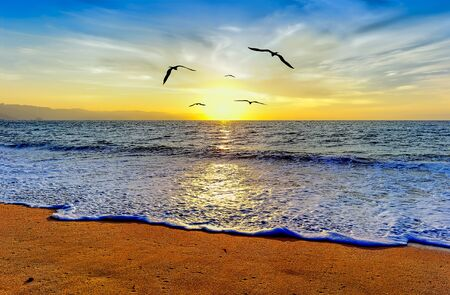 A Group of Birds are Flying Towards an Brilliant Beautiful Inspiring Light of Hope, Faith and Freedom