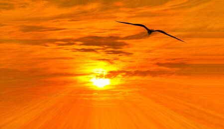 A Single Bird is Flying Toward the Sun as Light Rays Emanate From its Center