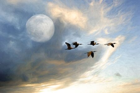 A Flock of Bird fly By a Rising Moon in a Dramatic Sky Stockfoto