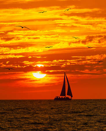 A Sailboat is Sailing Along the Sea As Birds Fly and the Sun Sets on th Ocean Horizon