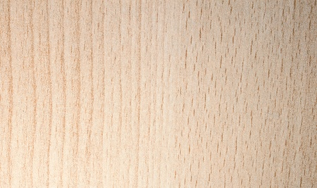Pattern of light wood artificial tree texture photo