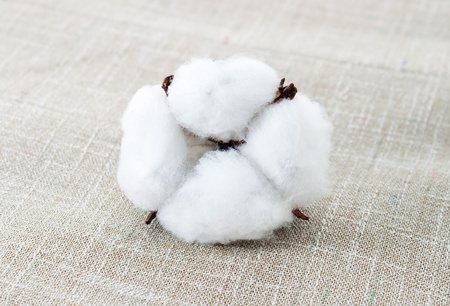 cotton ball: Cotton texture for the scarpbook Stock Photo