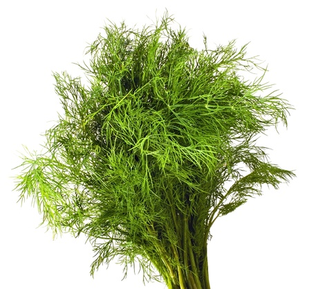 Fresh dill on the white background photo